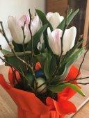 Frohe Ostern und mehr ...